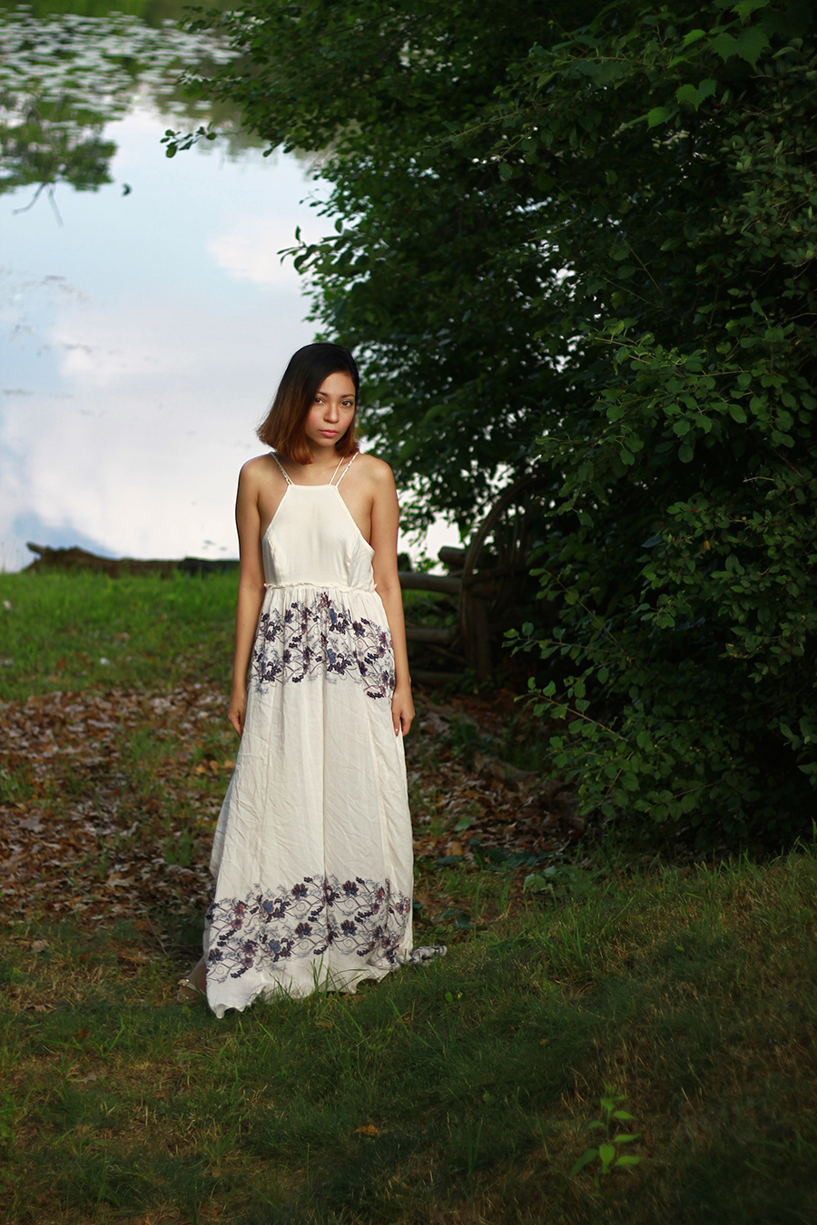 free-people-dress9